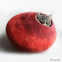 בית עשוי לבד לשנת צהריים של החתול שלכם